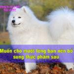 thuc pham giup cho muot long